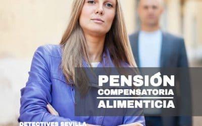 Investigación de la pensión compensatoria y alimenticia
