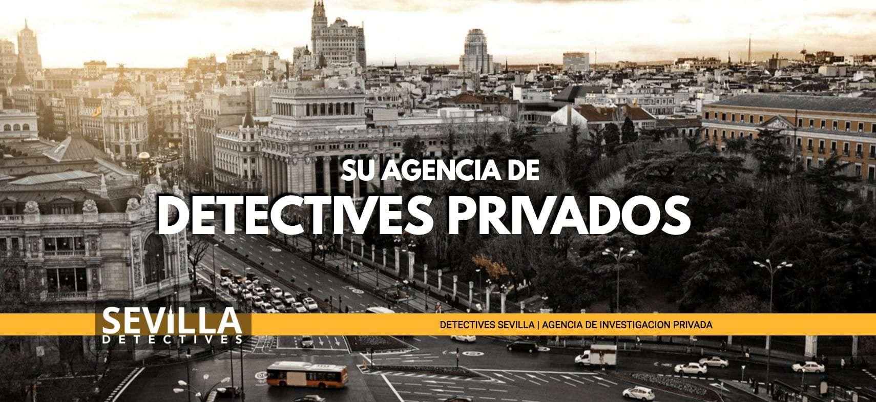 Detectives sevilla agencia de detectives privados for Registro de bienes muebles de valencia